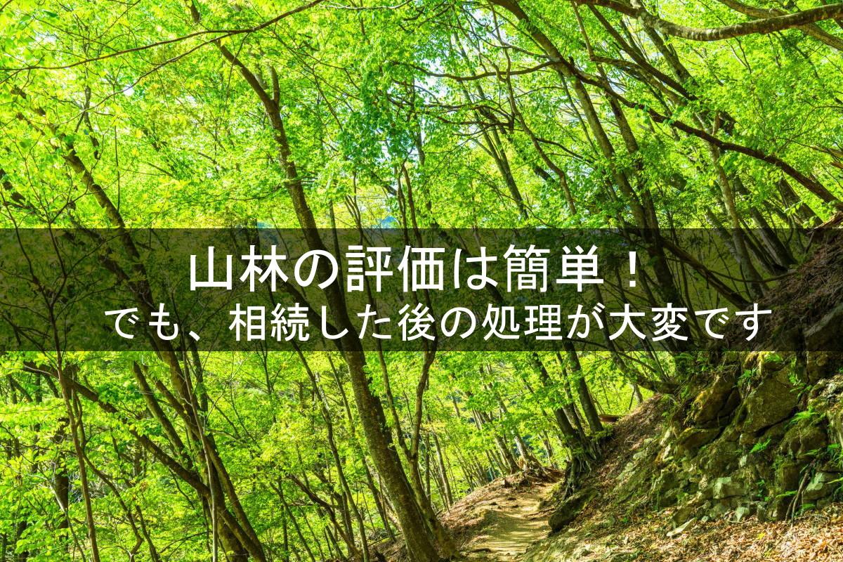 山林の相続税評価額